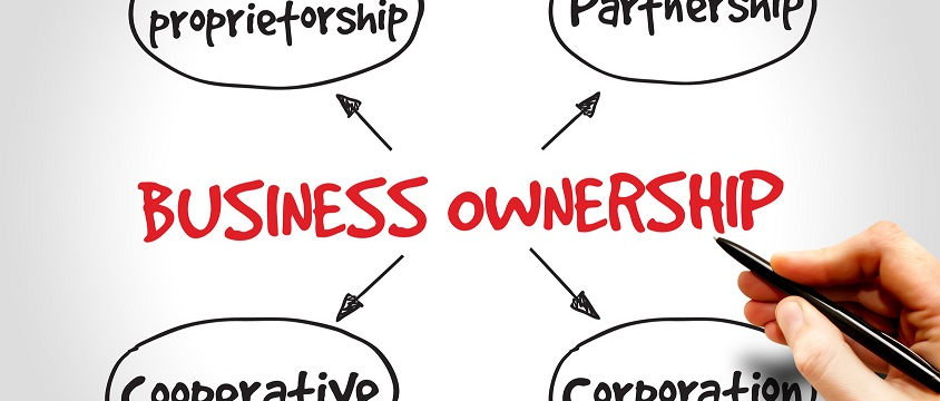 the types of business ownership essay It is important to understand the different types of business organizations types such as a sole proprietorship, partnership, and corporation a business's organizational structure influences issues, legal issues, financial concerns, and personal concerns.